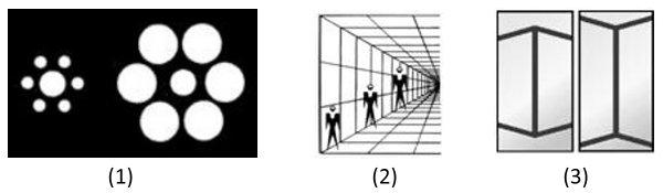 (1) Het linker centrale bolletje lijkt groter dan het rechter centrale bolletje, hoewel ze allebei even groot zijn. (2) De rechter streep lijkt groter dan de linker streep, hoewel ze even lang zijn. (3) De drie mannetjes lijken verschillend in grootte te zijn, hoewel ze alle drie even groot zijn.