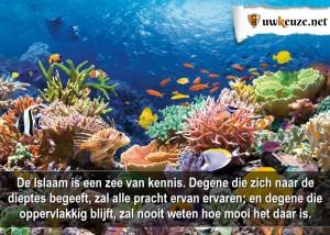 Zee van kennis