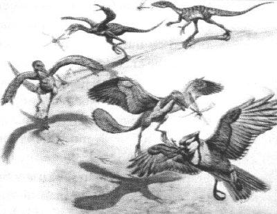 Een voorbeeld van de evolutionistische scenario's: dinosaurussen die plotseling vleugels krijgen tijdens het proberen vangen van vliegen!