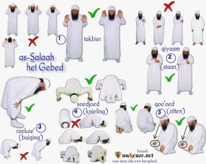 De verschillende posities tijdens as-salaah (het gebed).