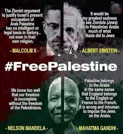 Palestina 6