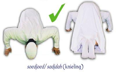 De correcte houding tijdens de soedjoed.