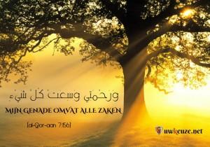 De Genade van Allah