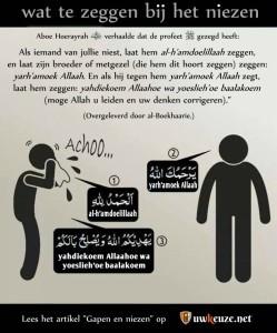 Tip: gebruik deze afbeelding voor da'wah.