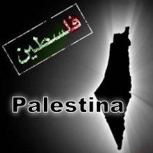 Palestina 8