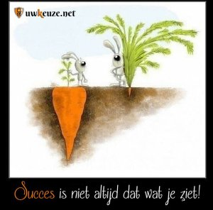 Succes wortel